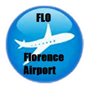 Airport Ground Transportation MYR CHS ILM FLO FLO Airport
