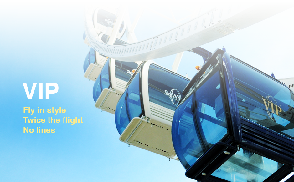 Skywheel Taxi Shuttle Service